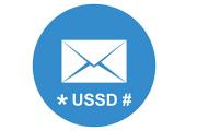 نگرانیهای بانک مرکزی در خصوص امنیت USSD